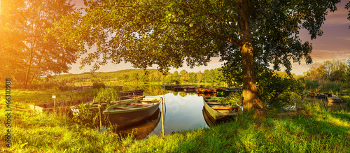 Under the trees, boats in the harbor at Lake - 66310988