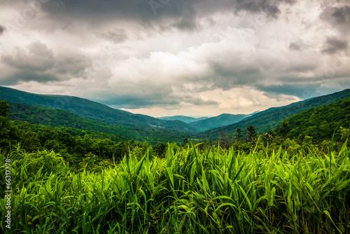 Valokuvatapetti Appalachian trail 2