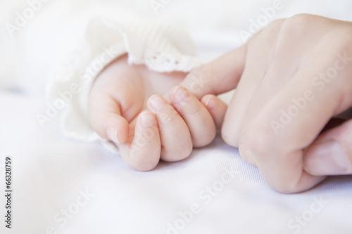 Fotografía  赤ちゃんと母親の手
