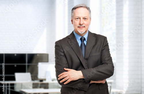 Fotografie, Obraz  Mature businessman portrait