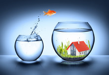 Fish Find House - Real Estate ...