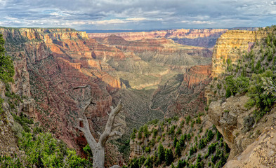 Obraz na Plexi Grand Canyon view panorama from north rim