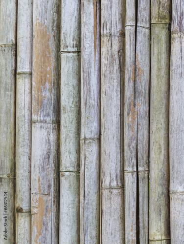 zblizenie-tekstura-stary-bambusa-ogrodzenia-tlo