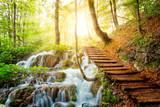 Głęboki strumień lasu z krystaliczną wodą. Jeziora Plitwickie, Chorwacja - 66419519