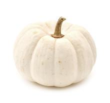 White Autumn Pumpkin Isolated ...