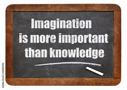 imagination and knowledge quote Canvas Print
