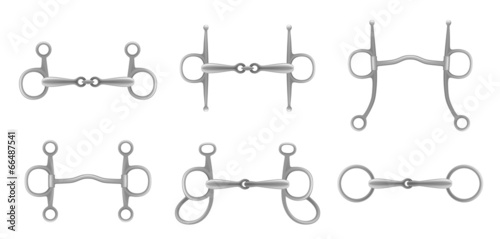 Canvas-taulu Snaffle set