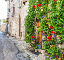 Fototapeta na wymiar Vicolo con fiori, Assisi