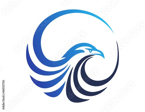 Photo  hawk logo,eagle symbol,bird icon media concept modern business vector design