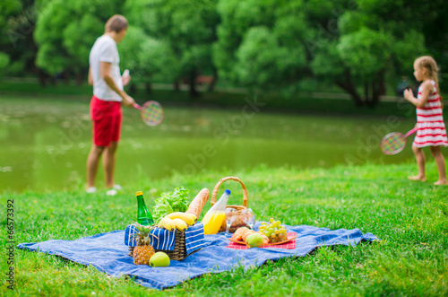 Türaufkleber Picknick Picnic basket with fruits, bread and bottle of white wine