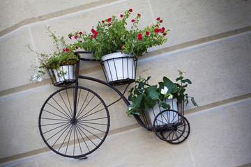 Fototapeta na wymiar Flowerpots on an old bike