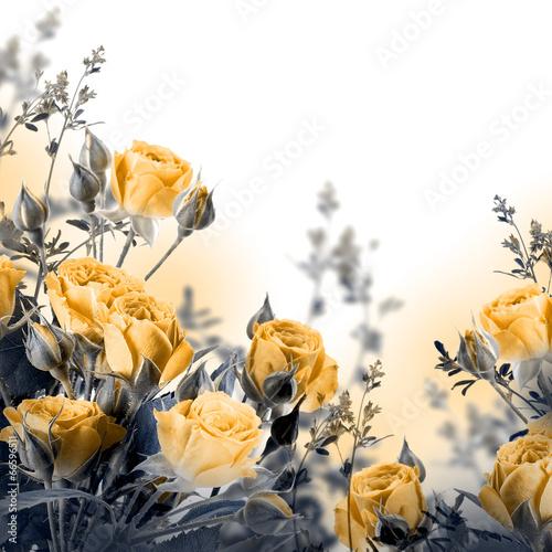 bukiet-delikatnych-roz-kwiatowy-tlo