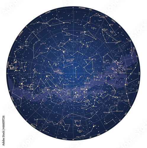 High detailed sky map of Southern hemisphere with names Wall mural