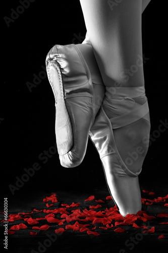 baletniczego-tancerza-pozycja-na-palec-u-nogi-na-rozanych-platkach-z-czarnym