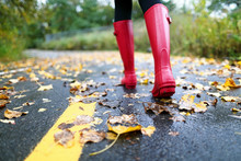 Autumn Fall With Colorful Leaves And Rain Boots
