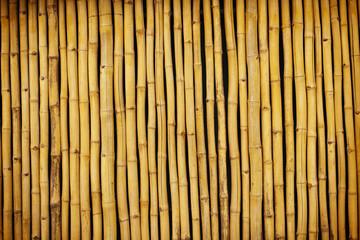 Panel Szklany Podświetlane Bambus Bambuswand 01