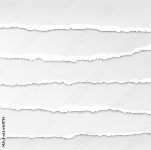 Fotografía  torn paper edges vector