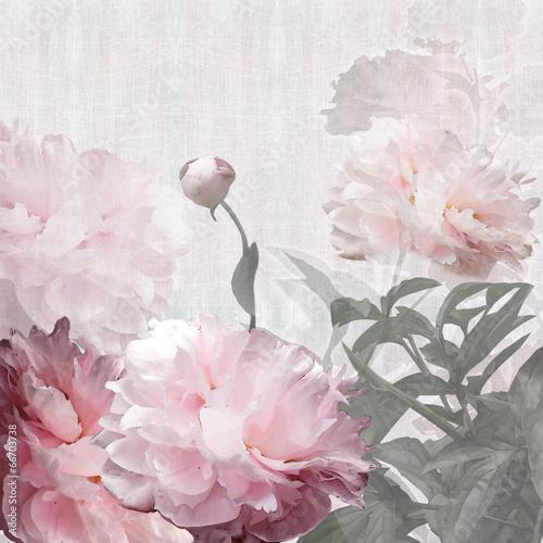 piwonie w kwiatowy wzór