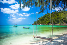 Swing Hang From Coconut Tree O...