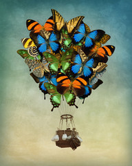 Fototapeta Motyle Butterfly hot air balloon