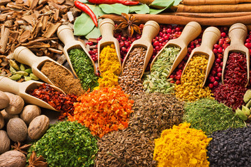 Fototapeta composition with different spices and herbs