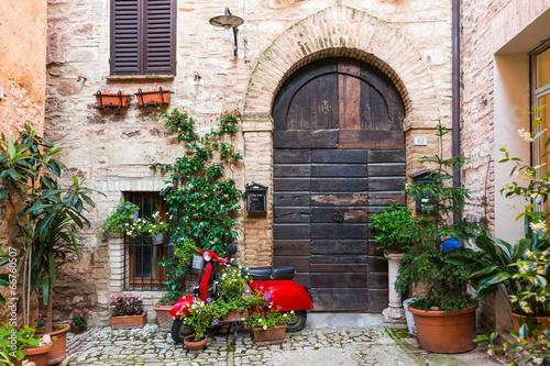 Fotografie, Tablou  Elegante porta di legno