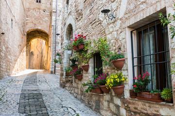 Fototapeta na wymiar Vicolo romantico italiano