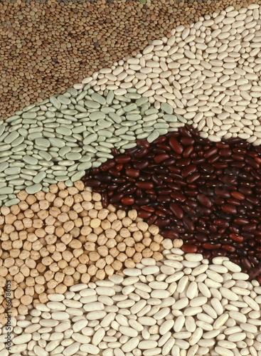Photographie Mosaïque de légumes secs