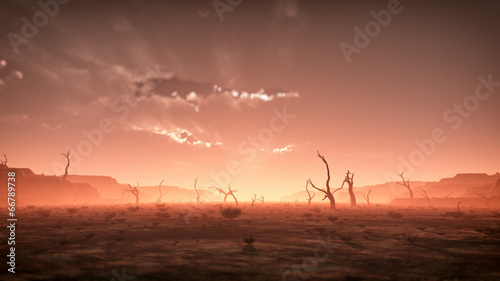 Extreme spooky dry misty desert landscape with dead trees at sun