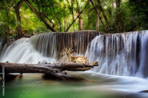 Küchenrückwand aus Glas mit Foto Wasserfalle Huai mae kamin Waterfall