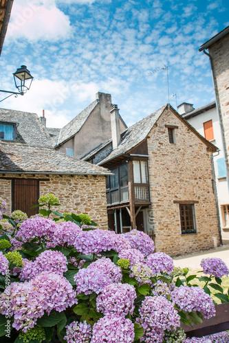 Sauveterre de Rouergue, Aveyron Canvas-taulu