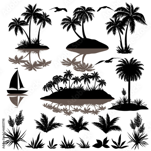 Tropical set with palms silhouettes #66851798