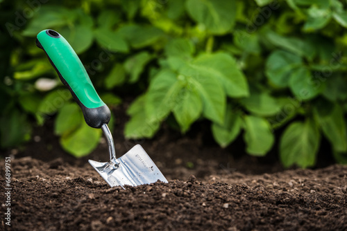 Foto op Aluminium Tuin Gardening shovel in the soil
