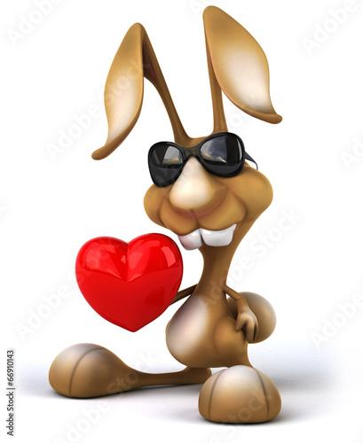 Fotobehang Boerderij Rabbit