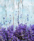 Lavendelsträuße am Zaun