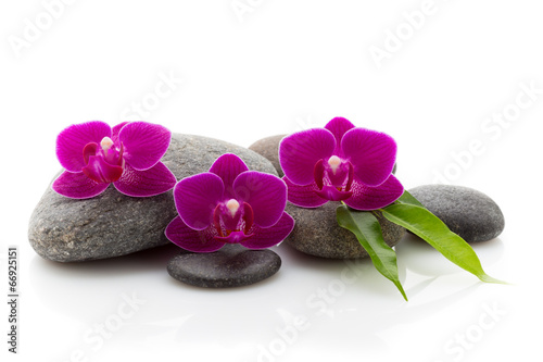 Fototapety, obrazy: Spa stones