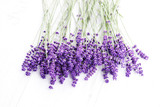 Fototapeta Lavender - lavande