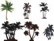 Palmiye ağaçları seti