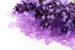 Lavender flowers and the bath salt - beauty treatment