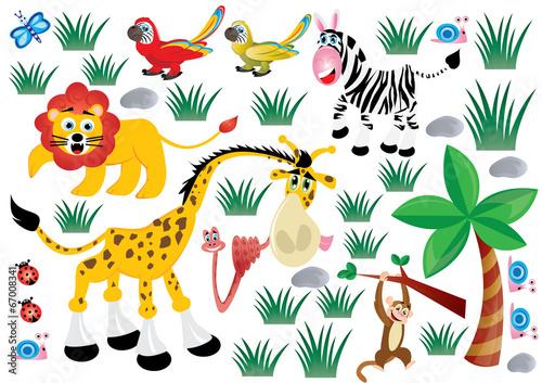 dzikie zwierzęta - 67008341