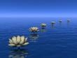 Water lilies steps - 3D render