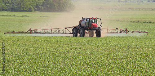 Fotografie, Obraz  Spraying a Corn Field