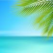 Strand mit Palmenblätter