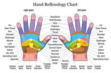 Hand Reflexology Chart Descrip...