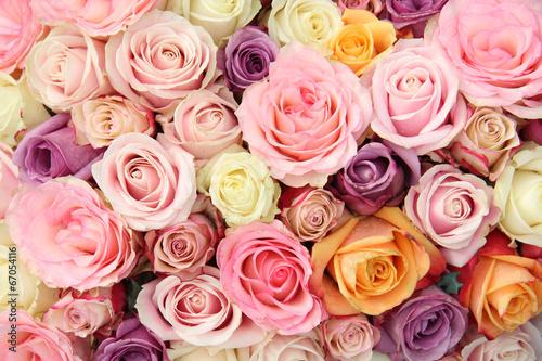 Fotografie, Obraz  Pastel wedding roses