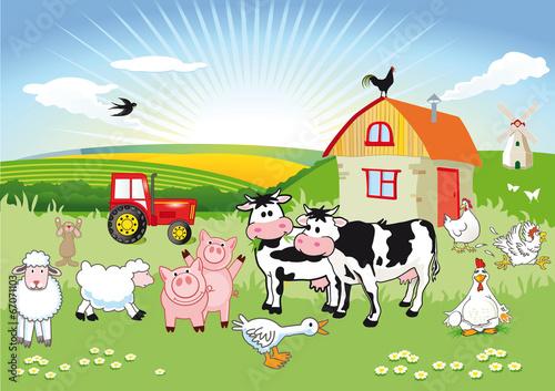Foto  Bauernhoftiere carton