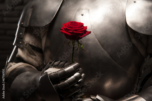 Photo  Knight giving a rose to lady