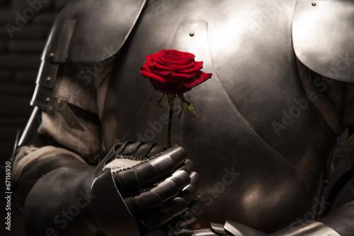 rycerz-w-zbroi-z-czerwona-roza