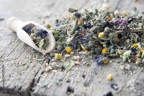 Fotografie, Obraz  Getrocknete Blüten und Kräuter