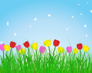 Panel Szklany Natura Summer meadow background with tulips